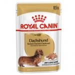 Royal Canin Teckel Dachshund Adult comida húmida para cães