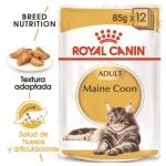 Royal Canin Maine Coon húmido para gatos