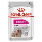 Royal Canin Exigent húmido para cães