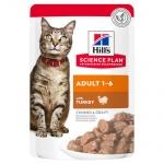 Bocadinhos tenros Hill s para gatos