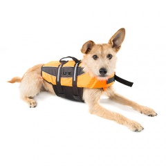 Roupa para cães - Tiendanimal b993d01896dc7