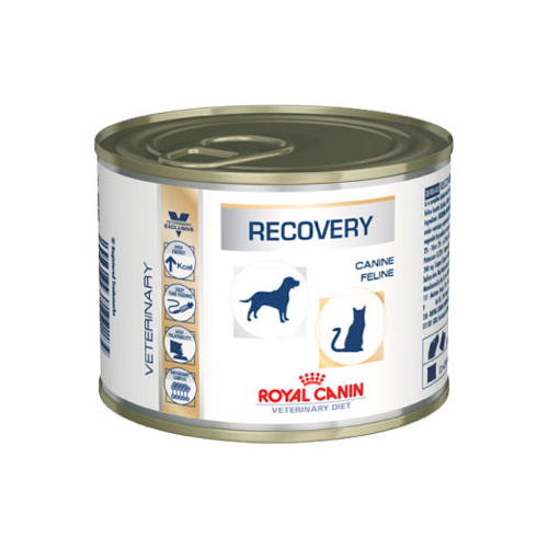 Royal Canin Recovery