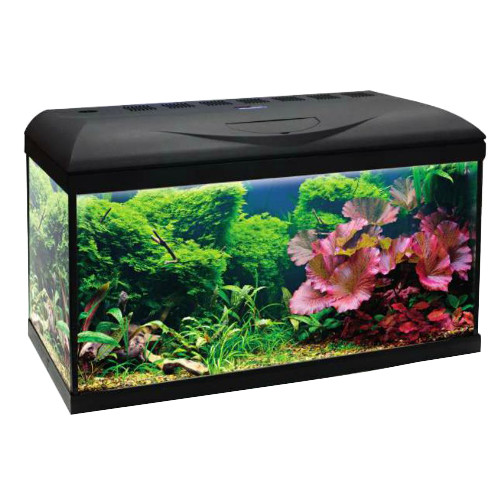 Acuario Wave Riviera Basic 80 Led