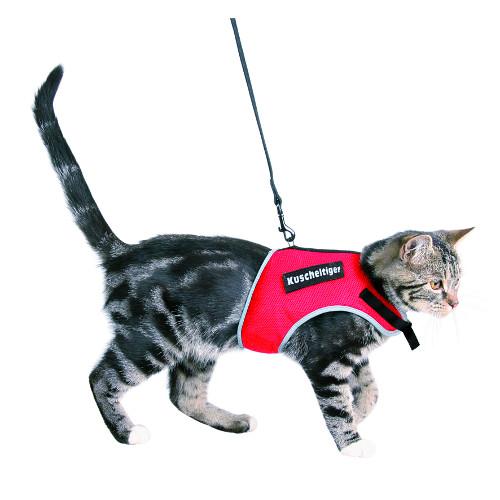 Arnês para gatos com correia Trixie Soft