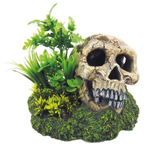 Decoração de aquários Caveira com plantas