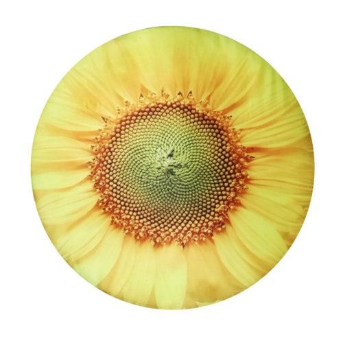 Almofada refrigerante Sunflower Fresh para cães