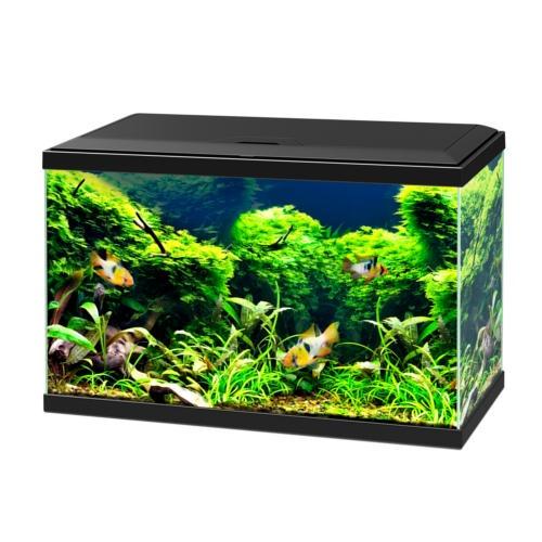 Kit de aquário Ciano Aqua 60 Led Bio preto