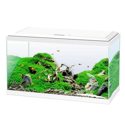 Kit de aquário Ciano Aqua 60 Led Bio branco