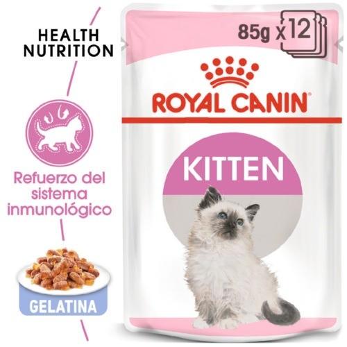 Royal Canin Kitten em gelatina para gatinhos