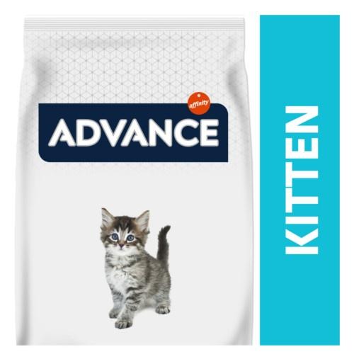 Advance Kitten