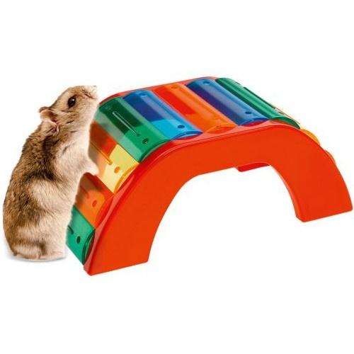 Ponte de cores para hamster