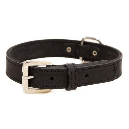 Coleira de couro para cães Namur preta