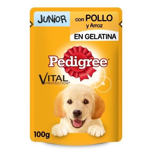 Saqueta Pedigree Junior Frango e arroz em gelatina