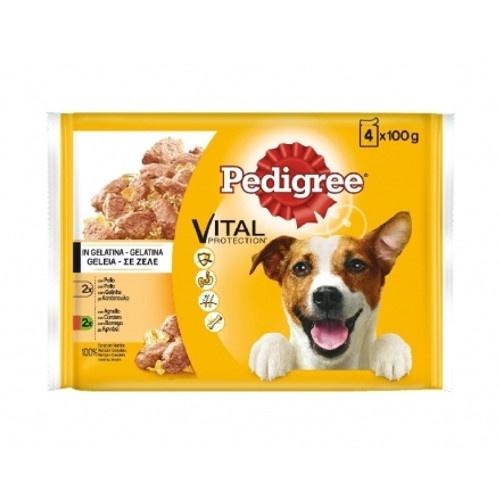 Multipack Pedigree Frango e Cordeiro em gelatina