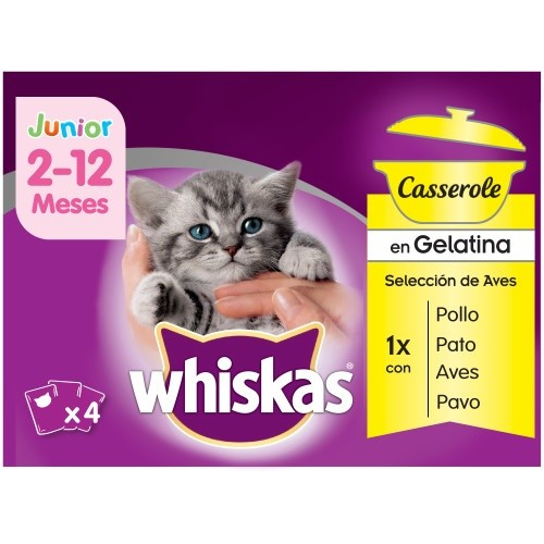 Pack Whiskas Junior Casserole Aves