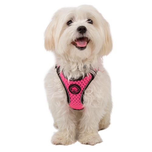 Peitoral de alta visibilidade TK-Pet Easy Click cor-de-rosa