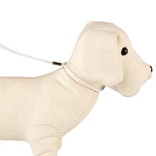 Coleira-trela de exposição TK-Pet branco