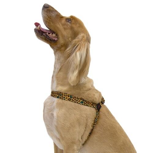 Peitoral para cães TK-Pet Leopard