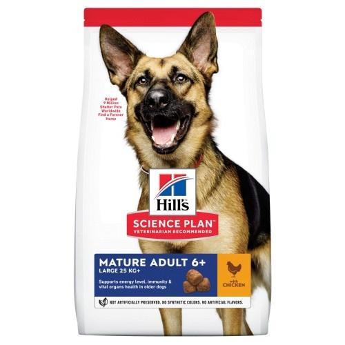 Hill's Canine Senior Raças Grandes