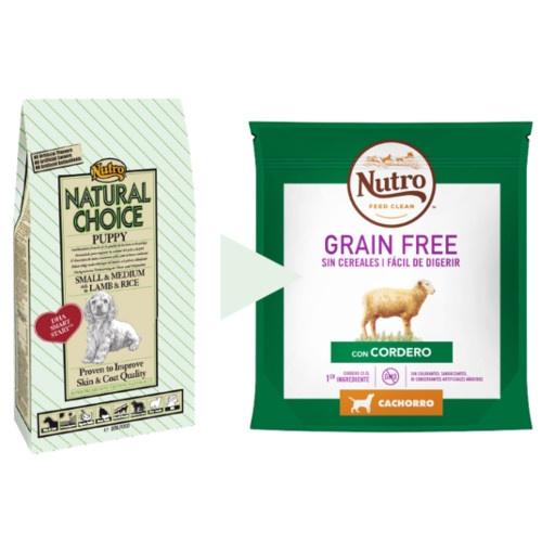 Nutro Grain Free com cordeiro para cachorros