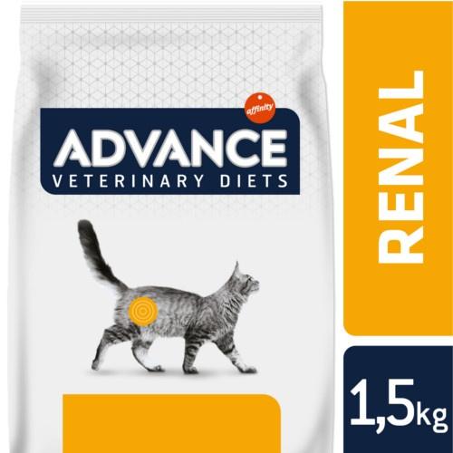 Advance Renal Failure Feline
