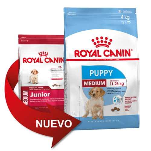 royal canin medium puppy tiendanimal. Black Bedroom Furniture Sets. Home Design Ideas