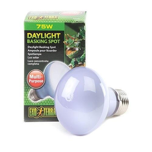 Lâmpada de Luz solar Daylight basking Spot