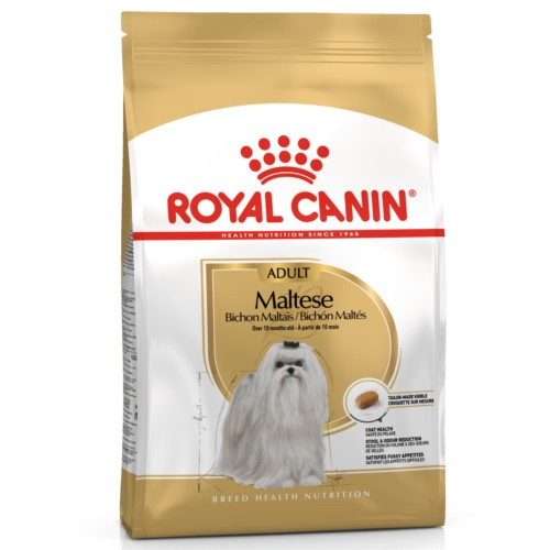 Royal Canin Bichon Maltês