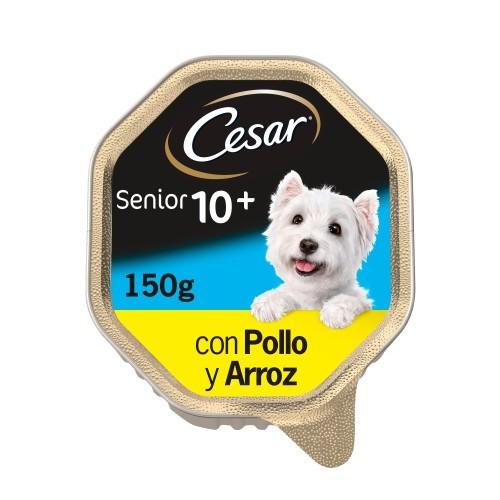 Terrine de gelatina em cão sênior Cesar