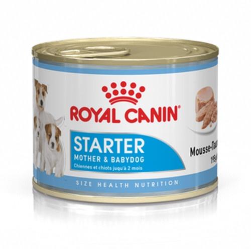 Royal Canin Mini Starter Mousse