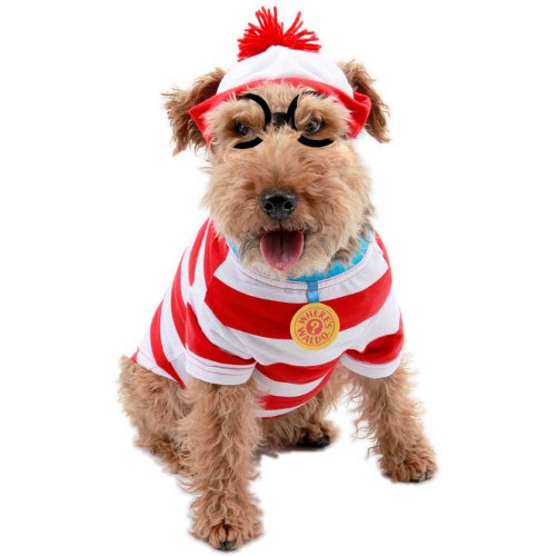 Disfarce de Wally para cães