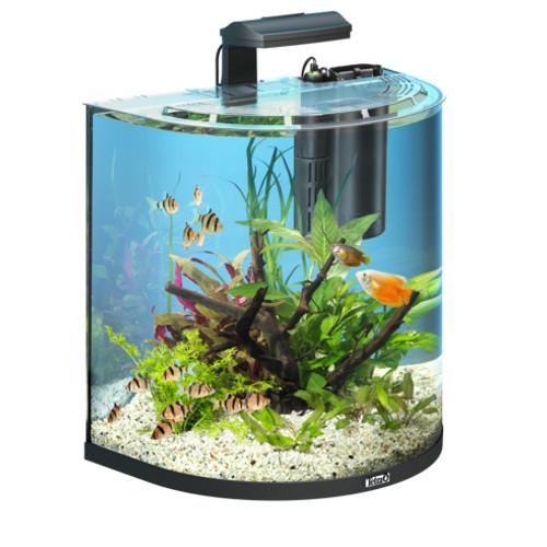 Aquário para peixes Tetra AquaArt Explorer Line 60 litros