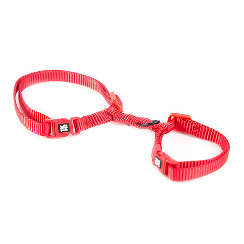 Arnês para gatos TK-Pet Classic Nylon vermelho