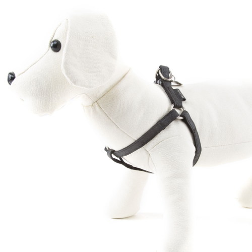 Arnês para cães MacLeather Classic Cor Preto