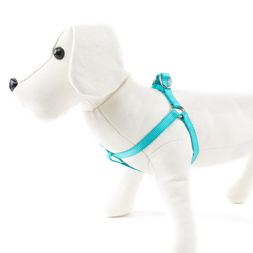 Arnés para cães de Nylon linha Basic Cor Agua-marinha