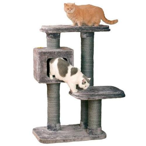 Arranhador com refúgio cama para gatos Big Cat