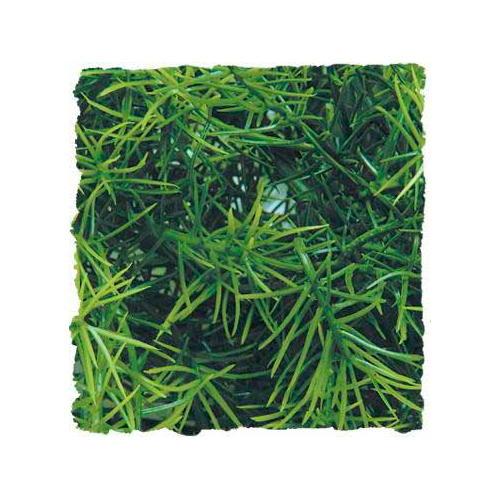 Plantas artificiais: Cassuarina