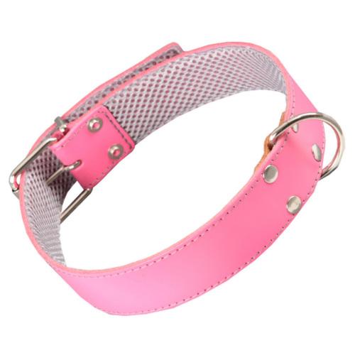 Coleira de couro rosa com forro interior para cães