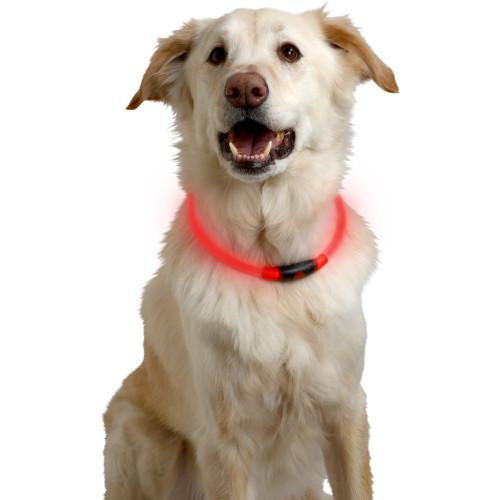 Coleira LED para cães NiteHowl de plástico