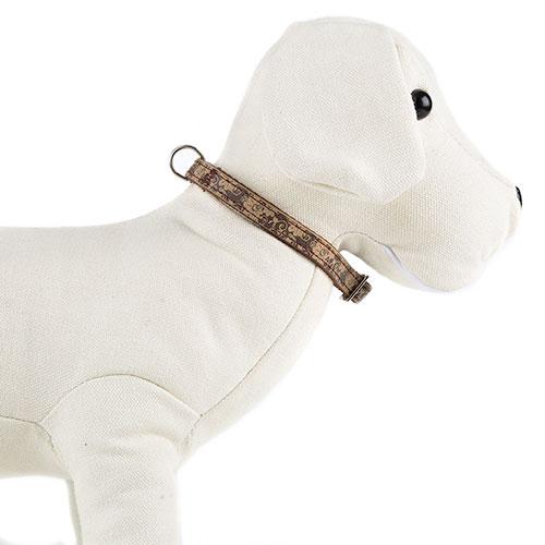 Coleira para cães Envy Flora Cor Castanho