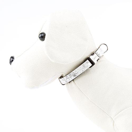Coleira para cães Envy Wild Forever Cor Branco
