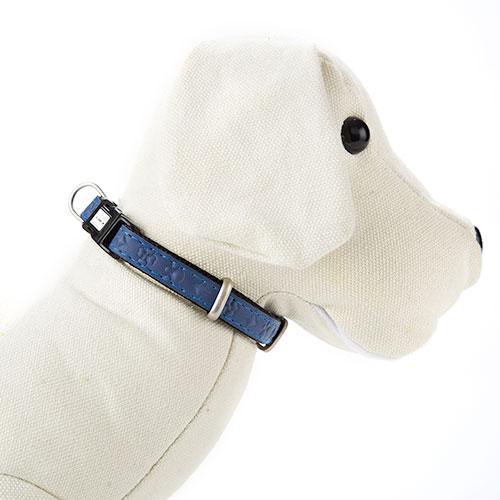 Coleira para cães MacLeather Star Azul