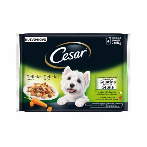 Comida húmida para cães Cesar Pouch Multipack em gelatina