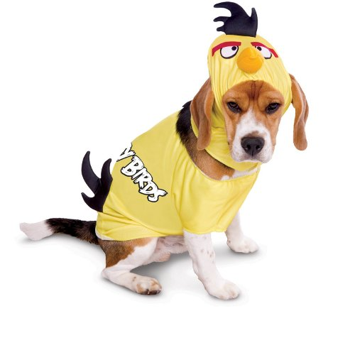 Angry Birds Amarelo Disfarce para cães