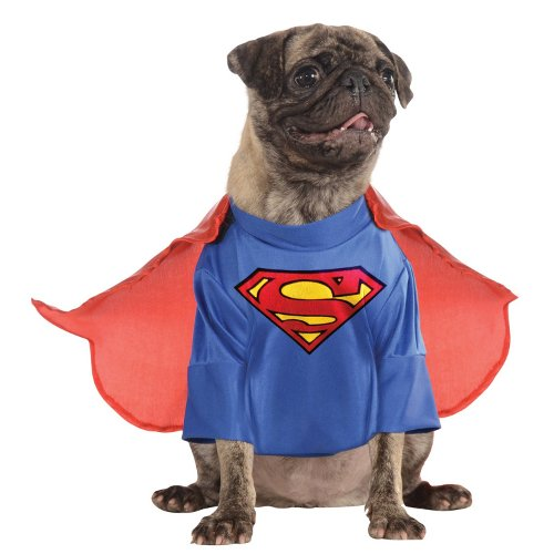 Superman Classic Disfarce para cães