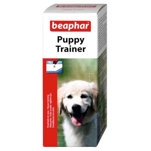 Educador para cachorros atrai-micções Puppy trainer