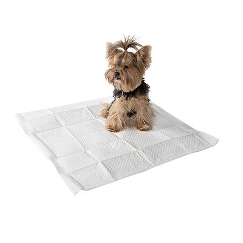 Empapadores para cães com aroma a limão TK-Pet