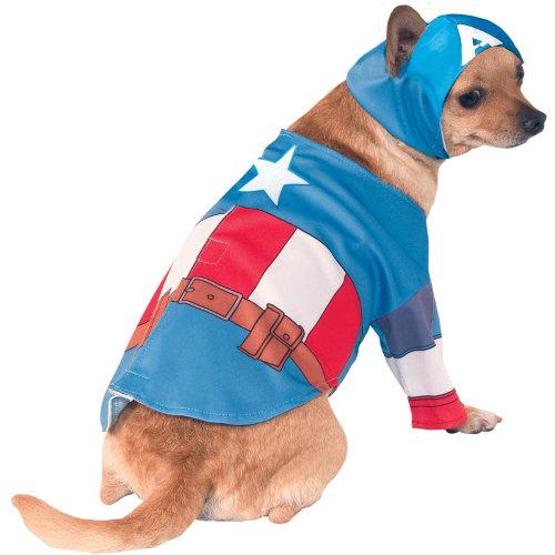 Fato Capitão América para cães