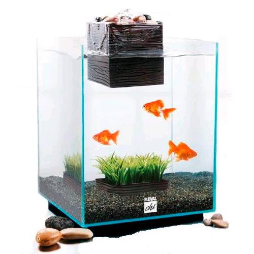 Kit de aquário Fluval Chi