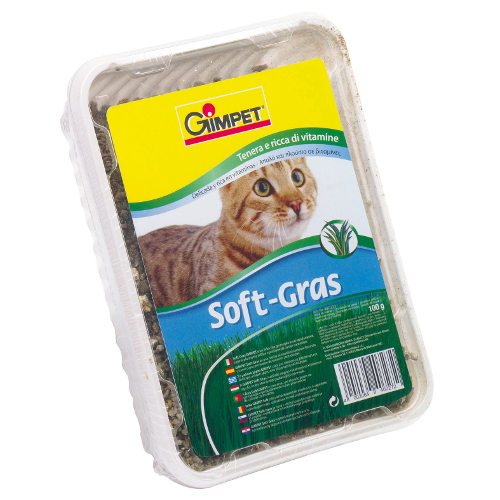 GimPet Soft Grass erva para gatos tenra